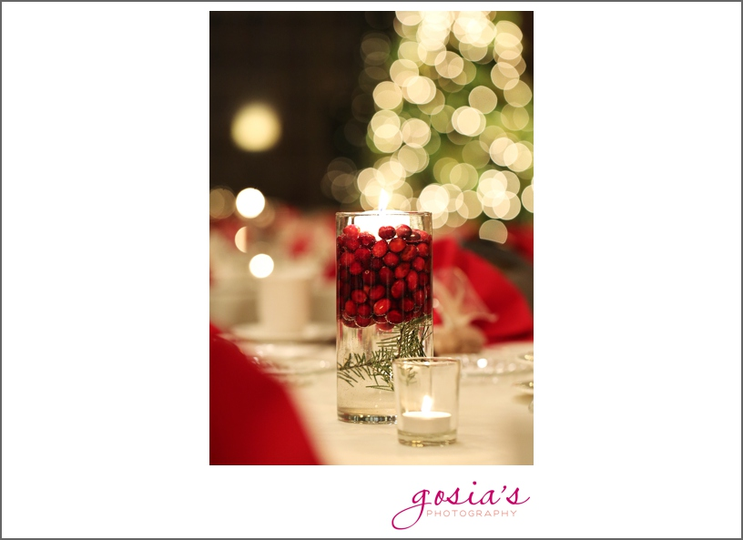 Bridgewood-Neenah-WI-wedding-photographer-Gosias-Photography-Jesse-and-Adam-web-_0036.jpg
