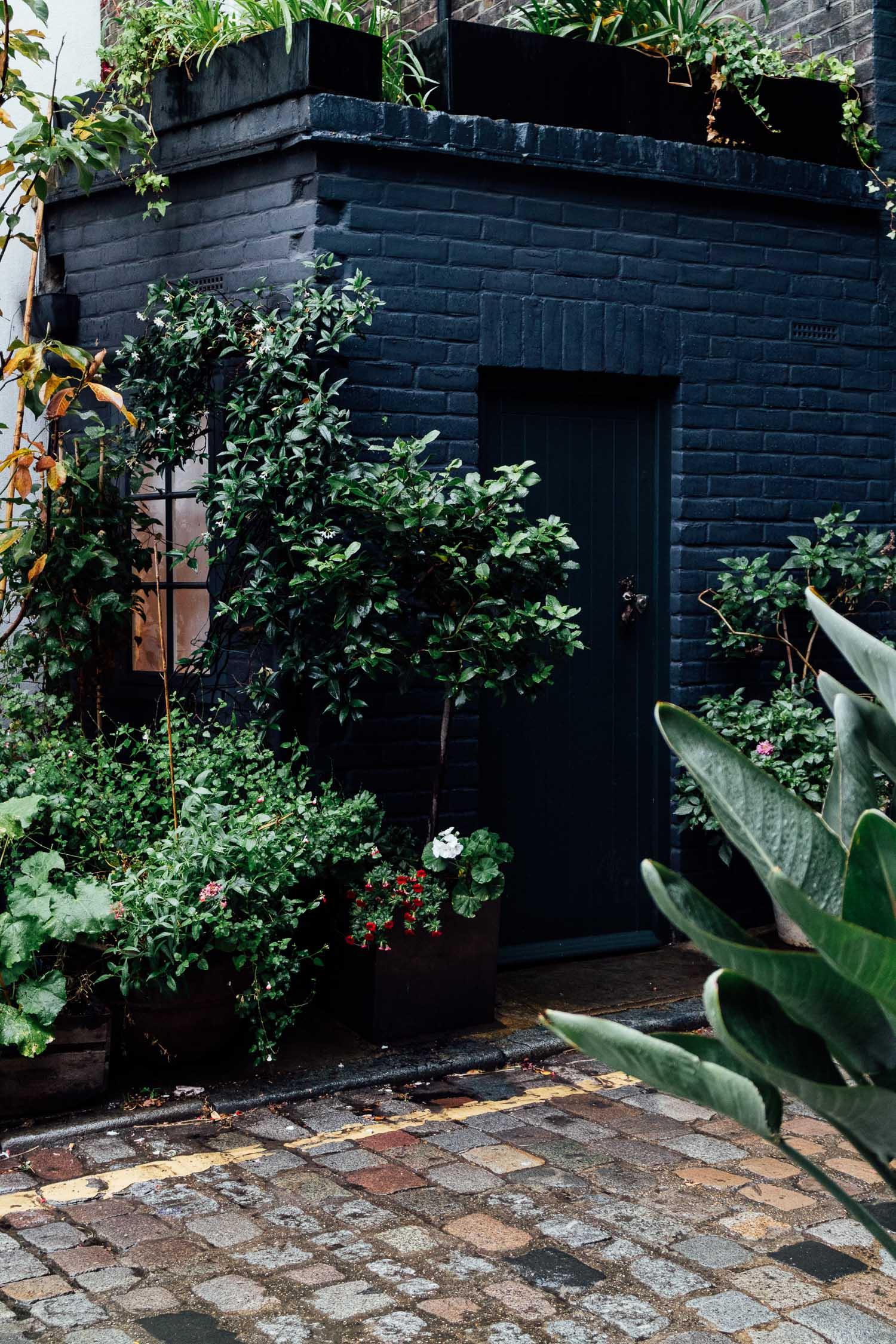 Botanical - garden photography