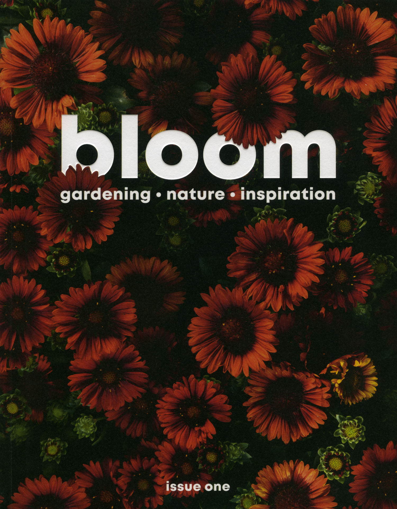 Bloom Magazine cover by On a hazy morning