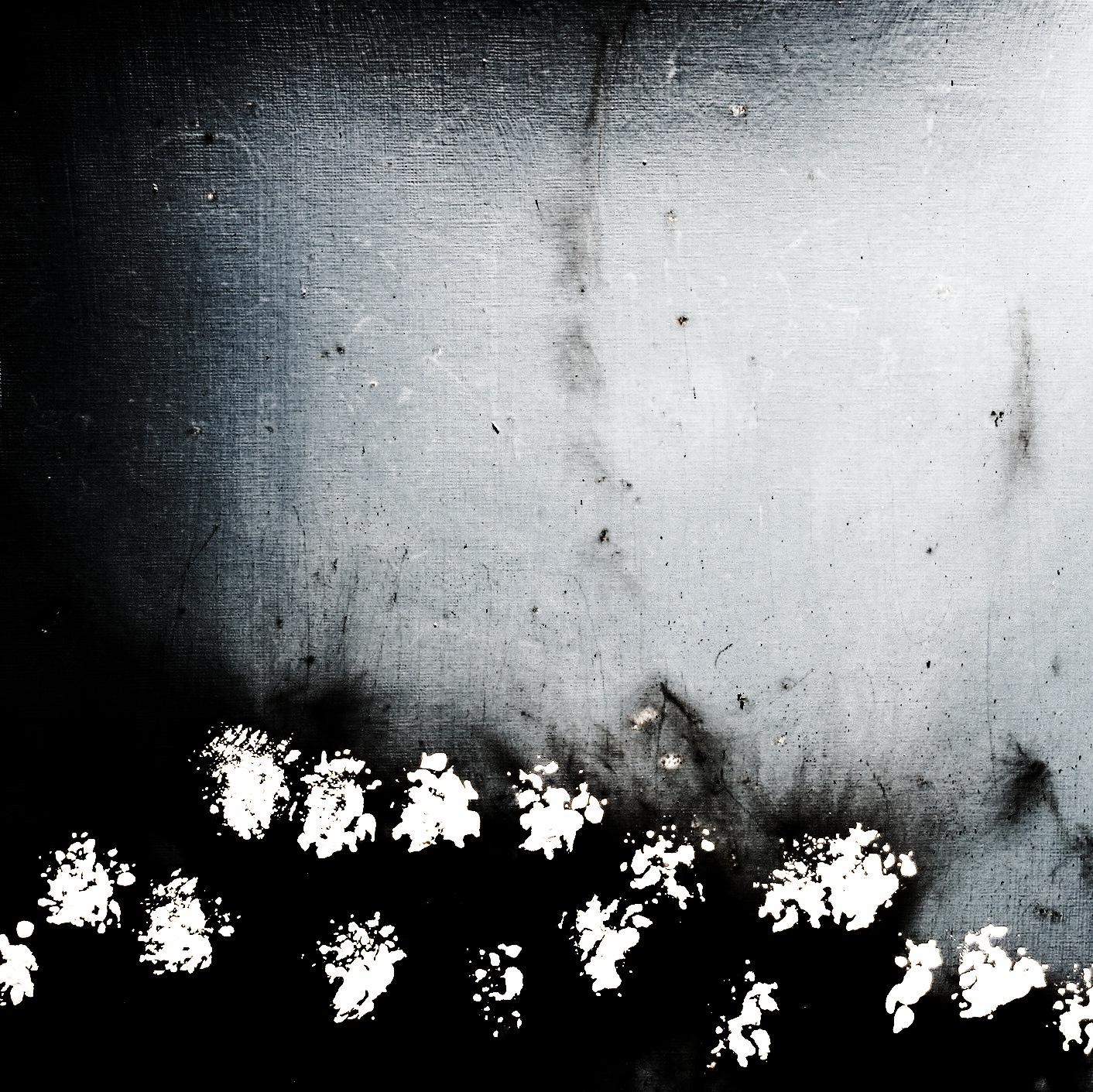 Flowers Black n White.jpg