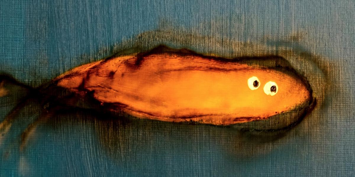 One Fish 2 1.jpg