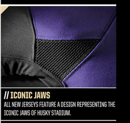 The Iconic jaws of Husky Stadium