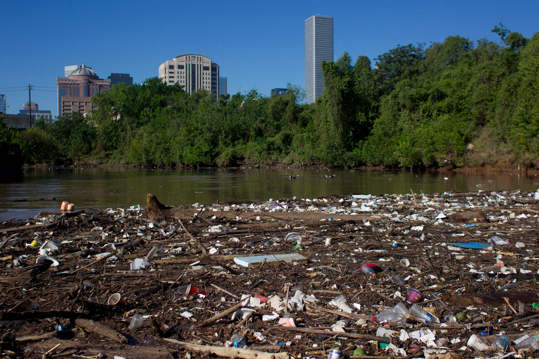 Behold Houston's picturesque Bayou system.