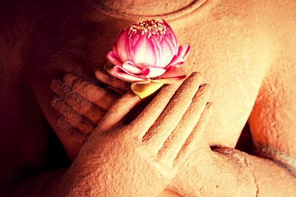 Buddha lotus.jpg