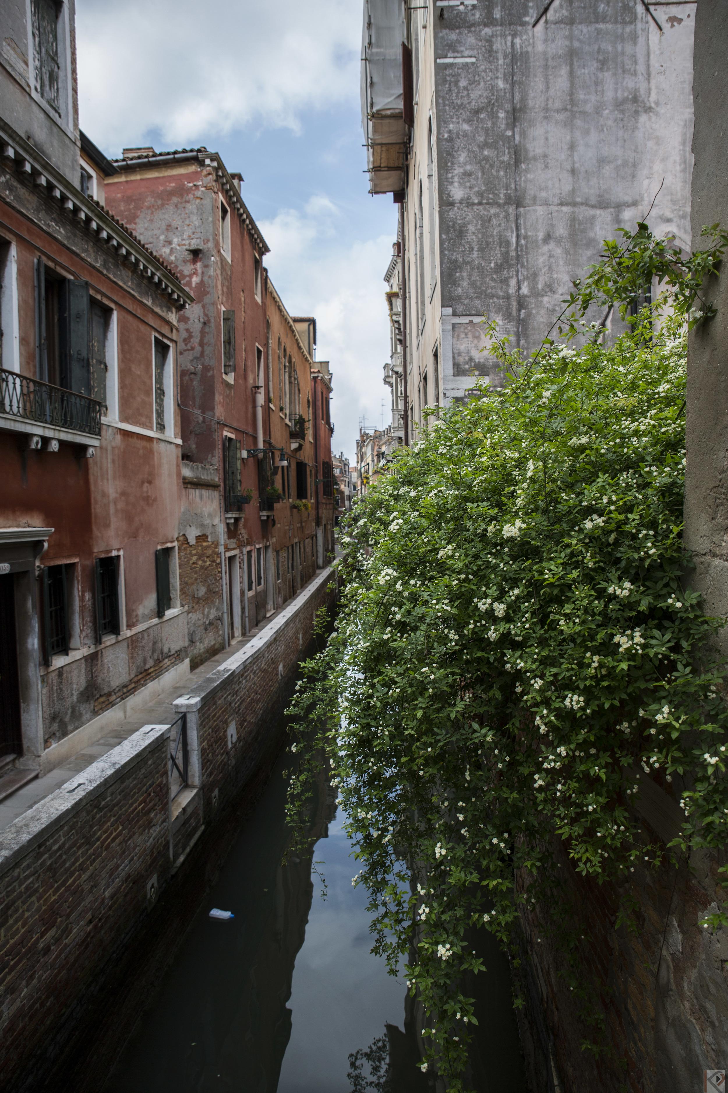 Italy2015-64.jpg