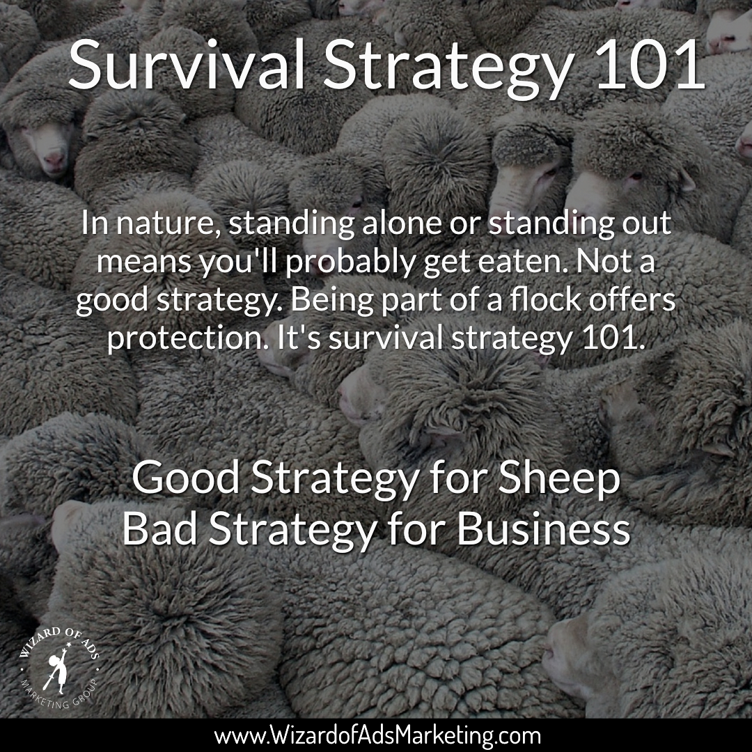 survival_strategy_101