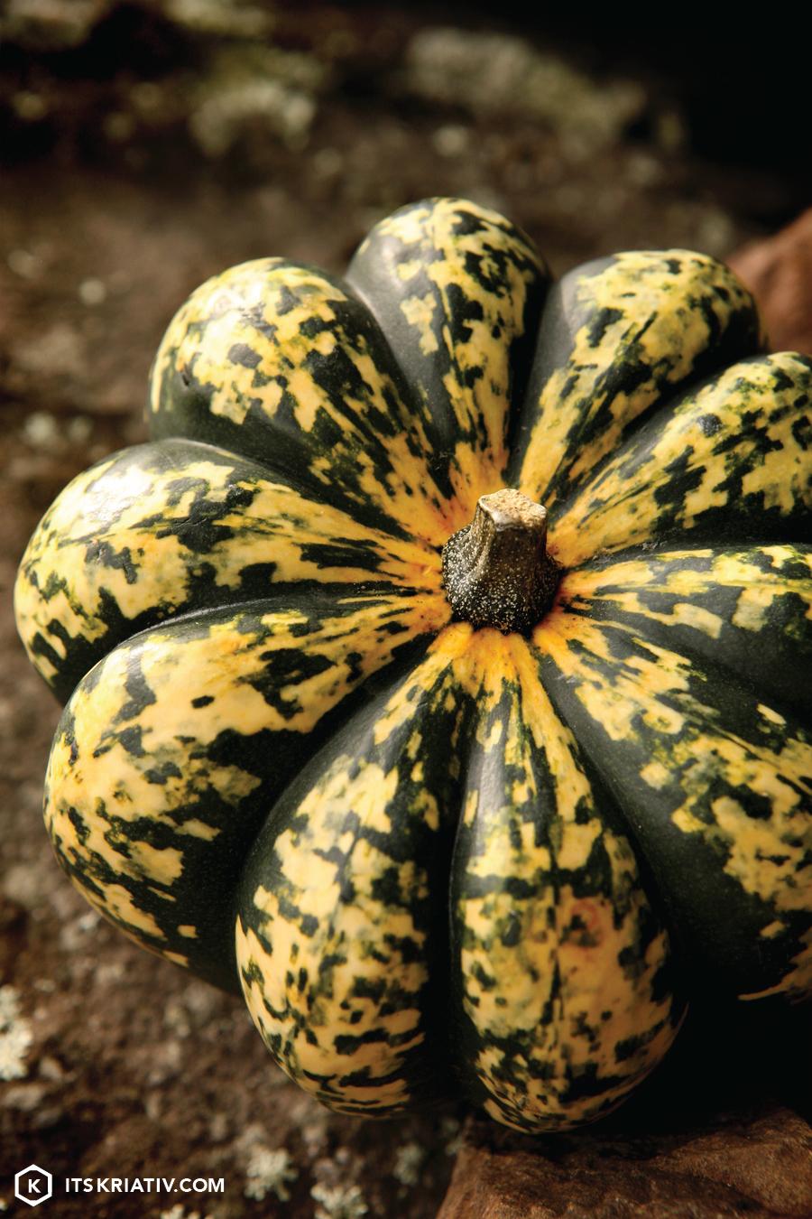 13_Nov_Food-Squash-Rings-03.jpg