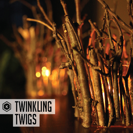 13_Nov_Food_Twinkling-Twigs-01.jpg
