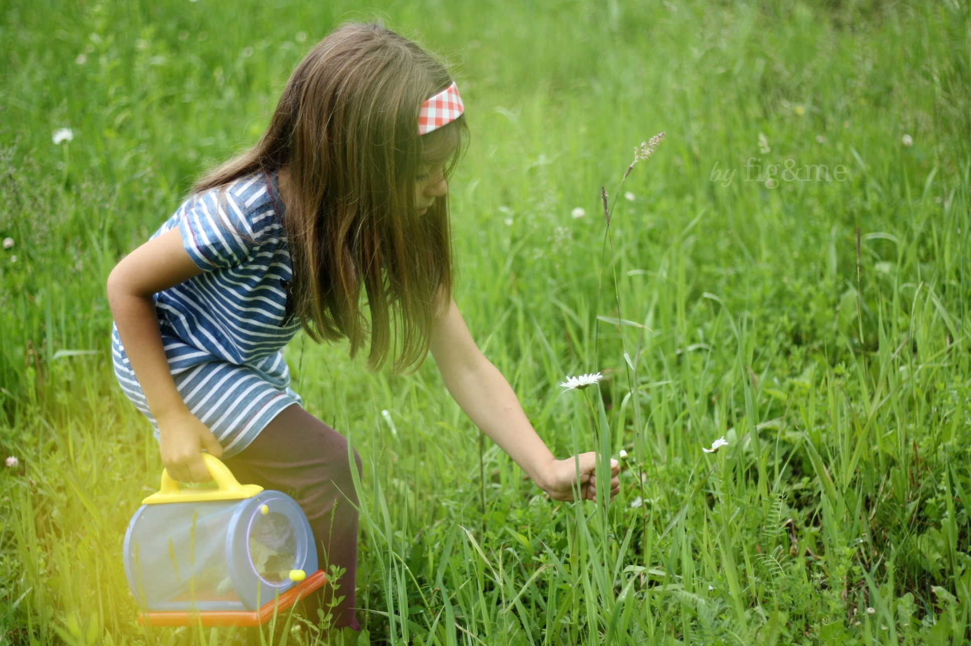 Finding insects and wildflowers, life learning.