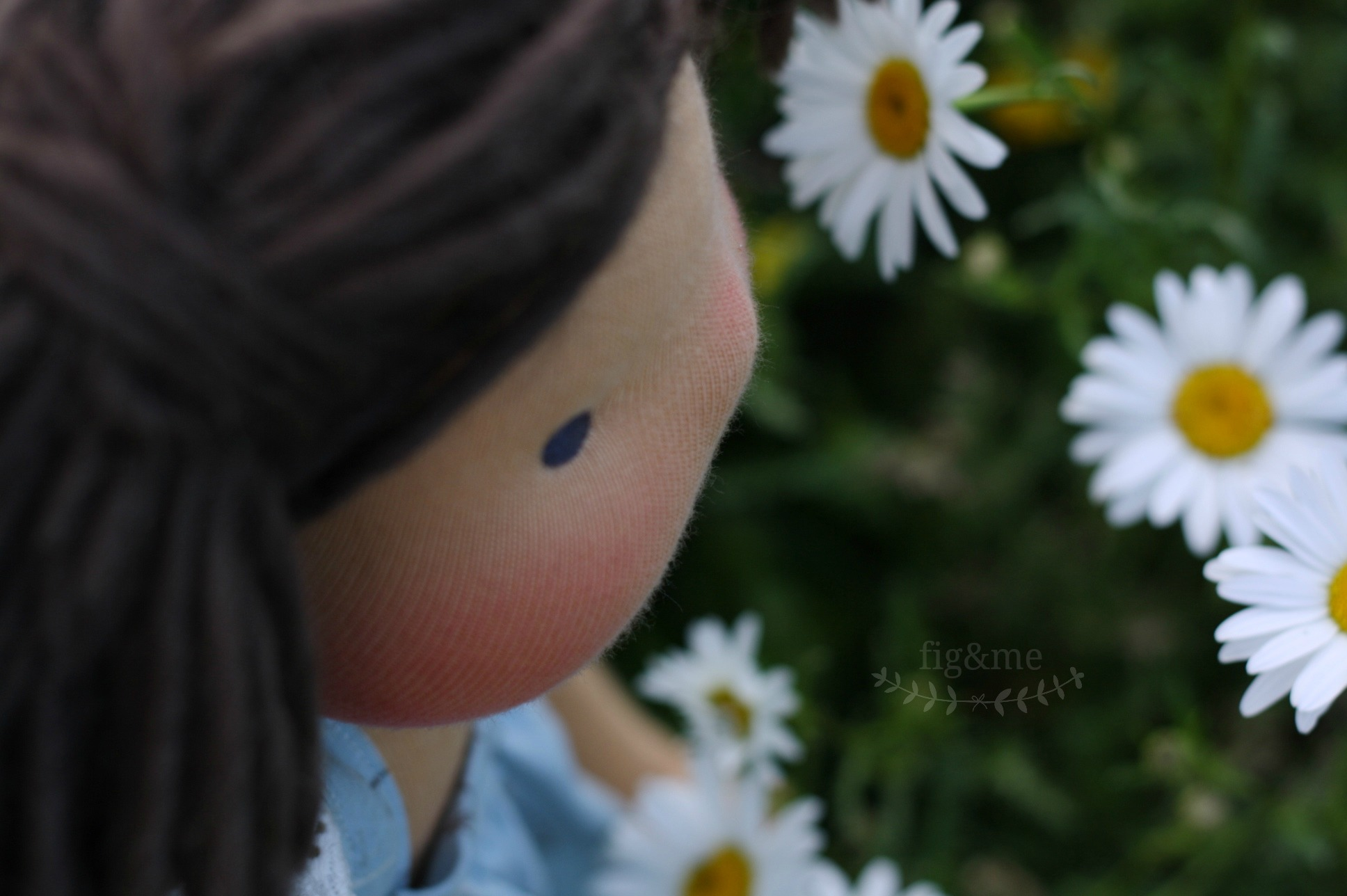 smelling the daisies, by fig and me.