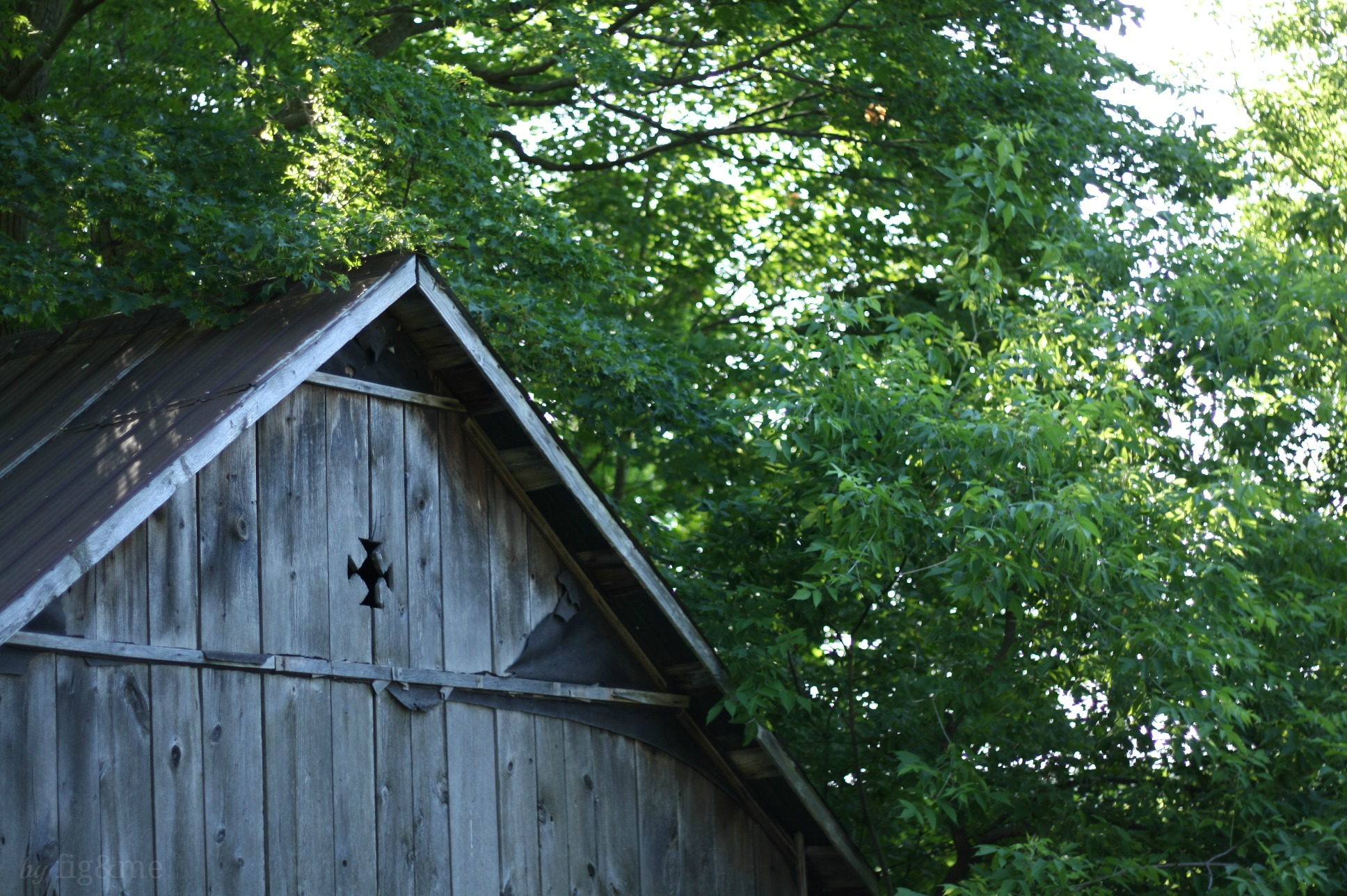 Old weathered barn, by fig and me.