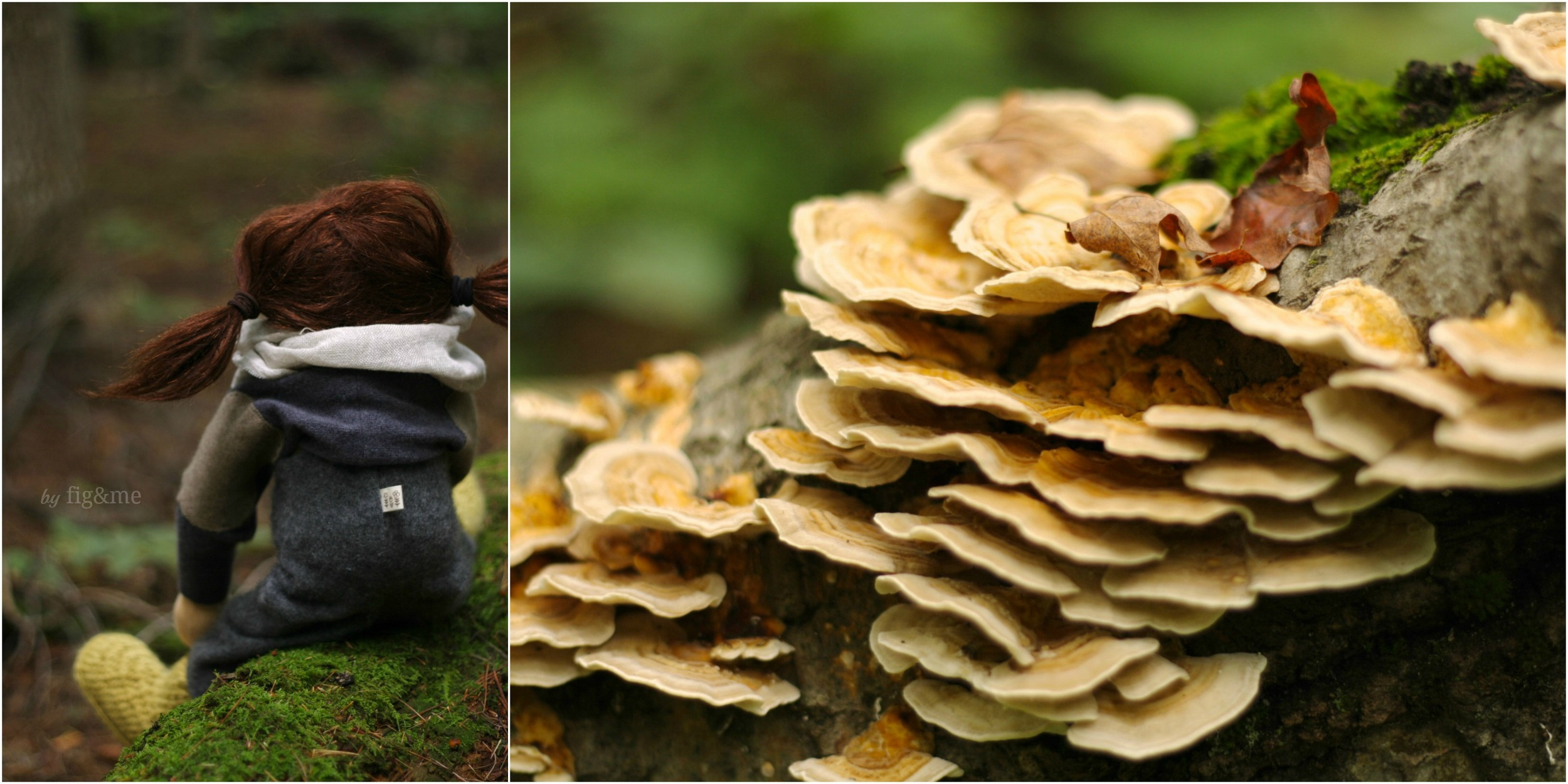 Olivia and the fungi, by Fig and me.