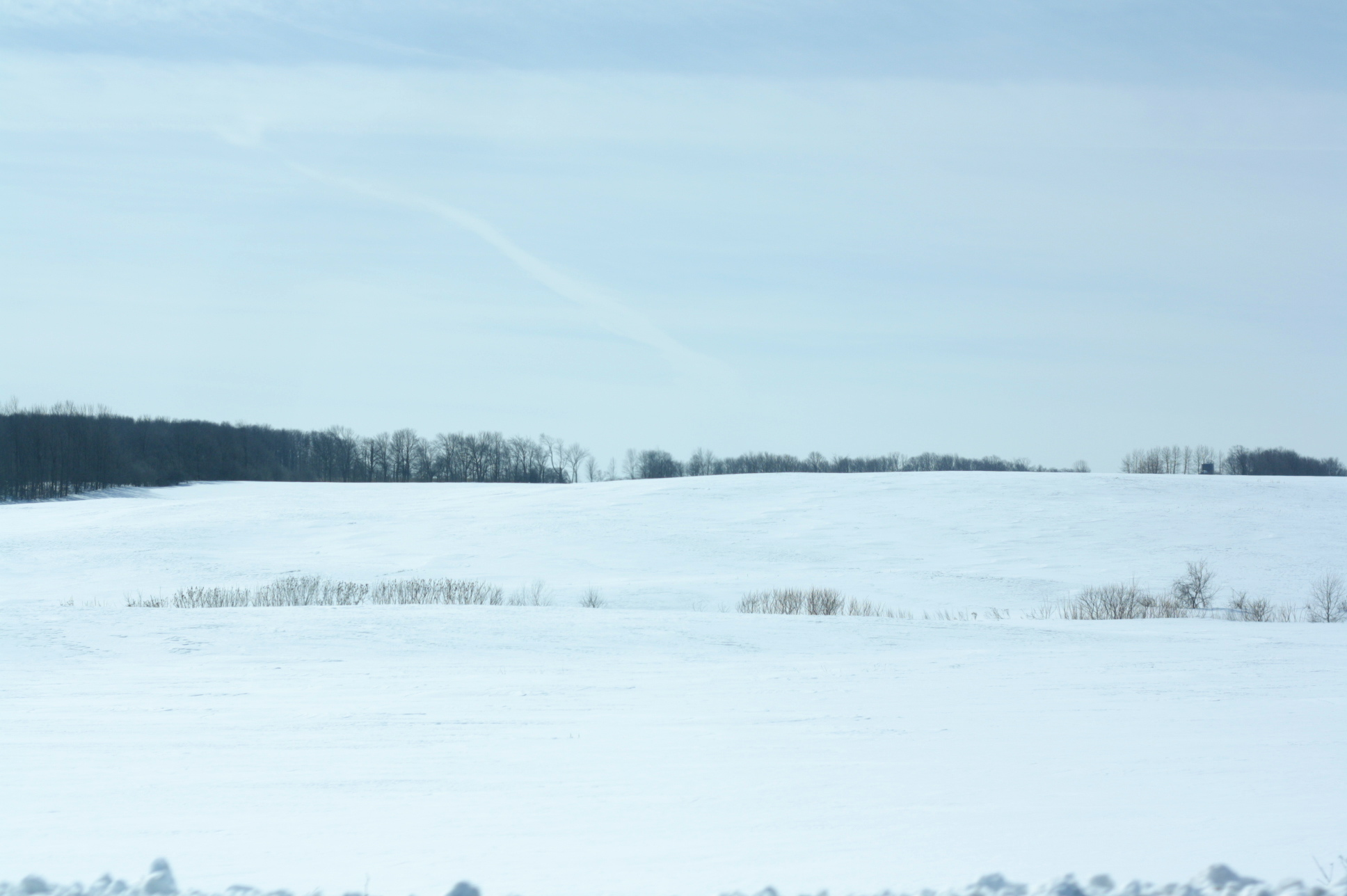 vast-expanse-of-winter.jpg