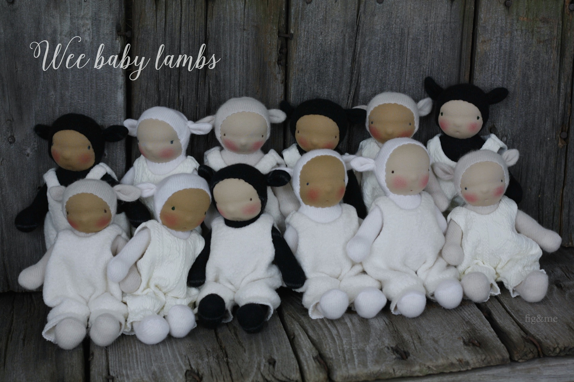 Wee Baby lambs by fig and me