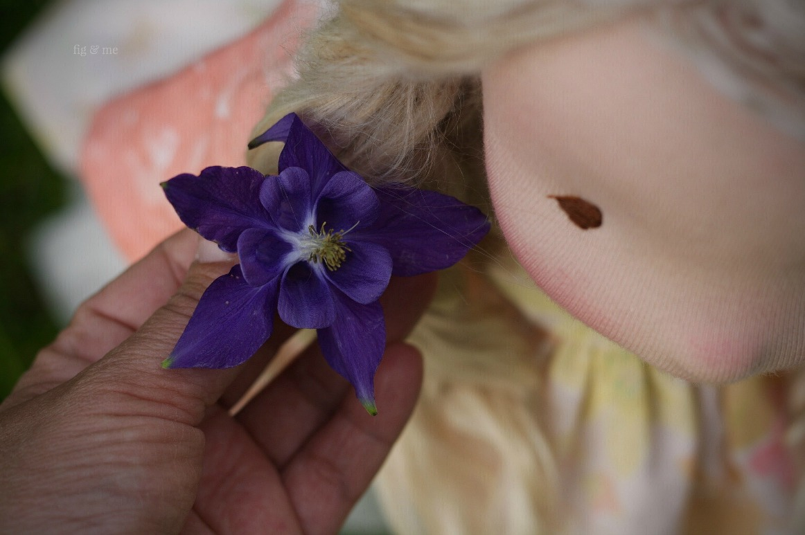 Picking columbines for Phoebe, by Fig and Me.