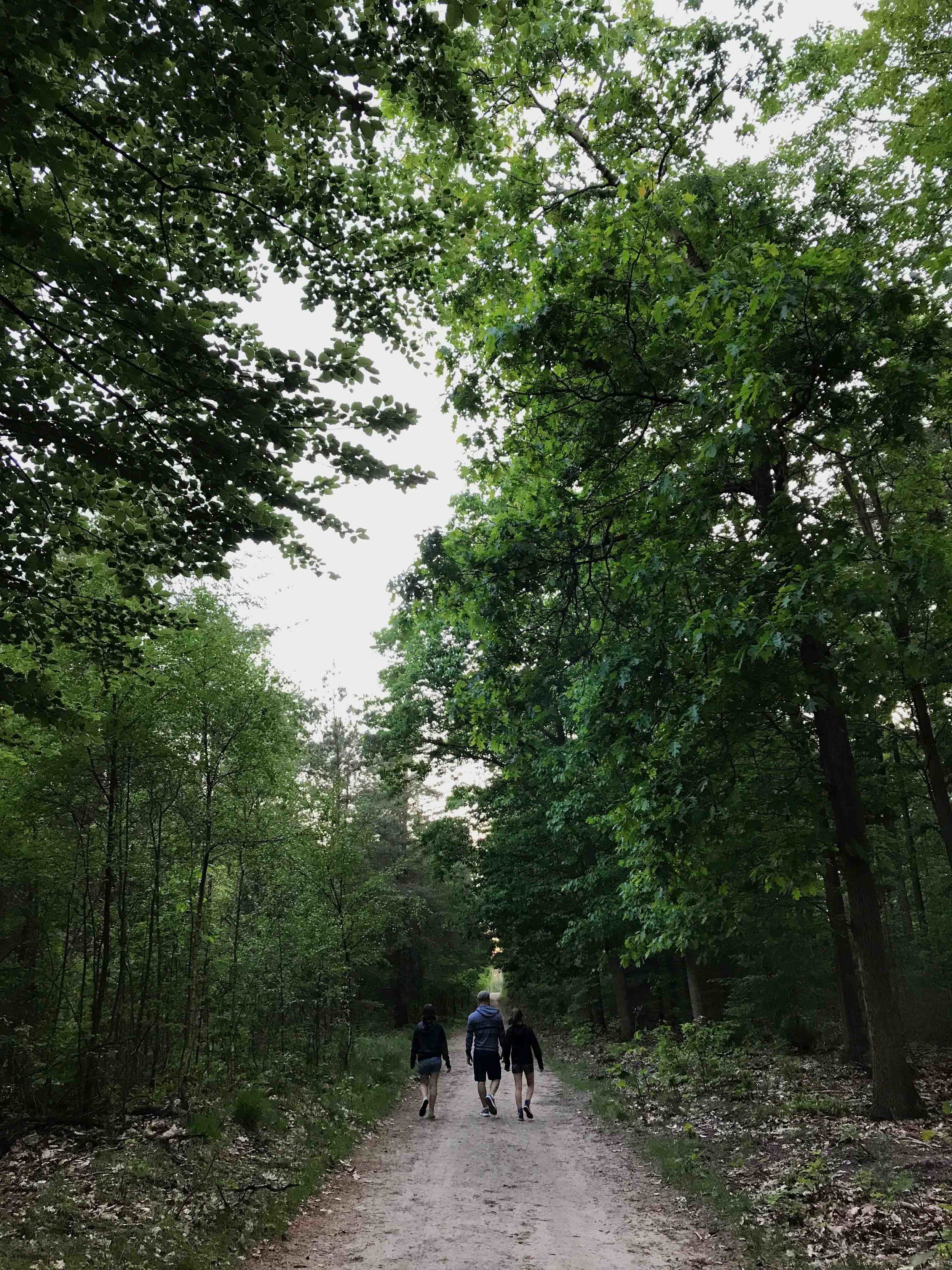 My family exploring the magical area around Vierhouten and Emst. Holland 2018.