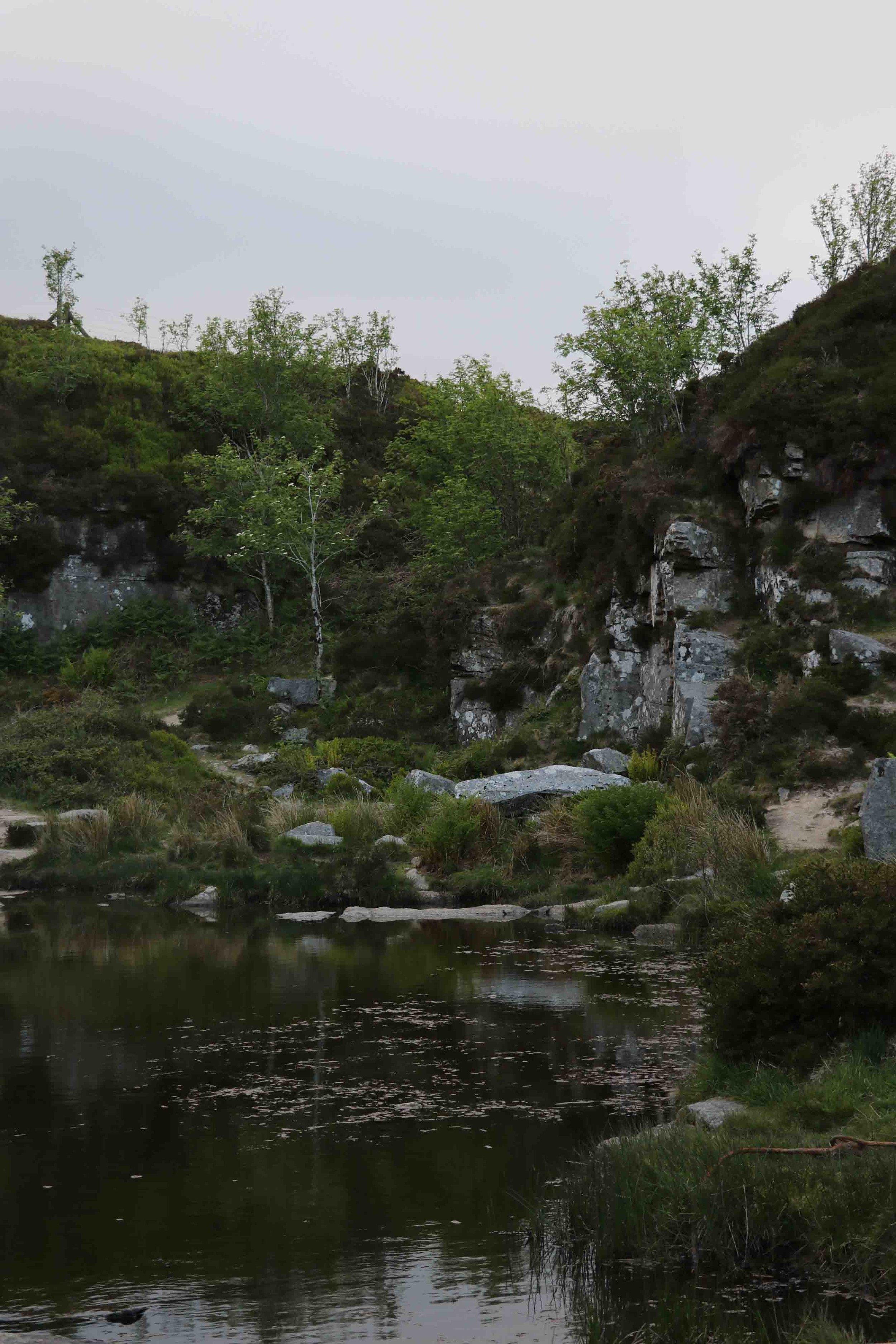 A magical pool in Dartmoor, UK.