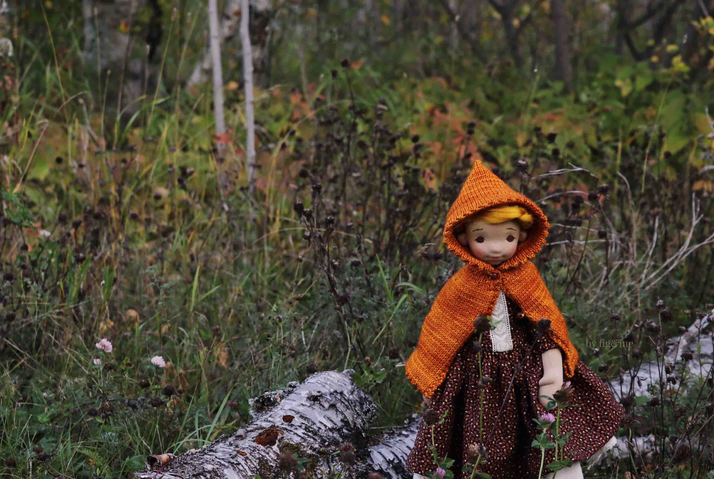Winona in those autumn meadows she loves, by fig and me