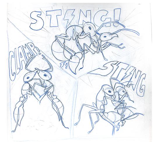 bullet ant2.jpg