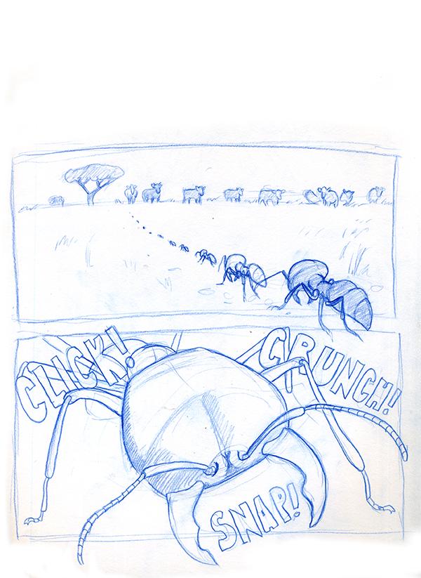 driver ant 2.jpg