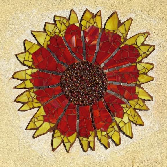 California Blanket Flower