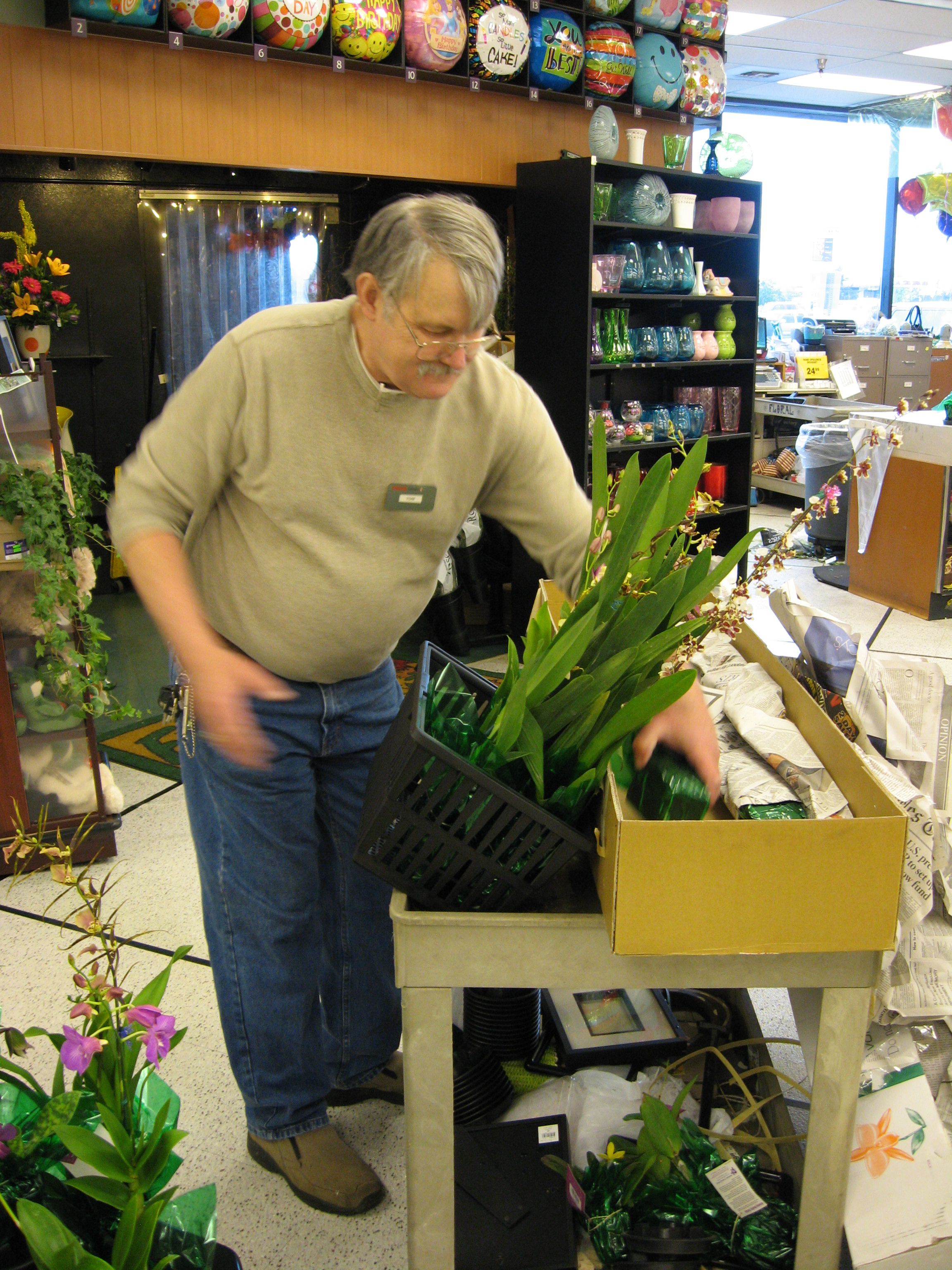 While in the local grocery store in Anchorage we found this guy putting out an amazing display of orchids. Had a wonderful chat with him about growing and care of orchids. That wasn't in our plan.