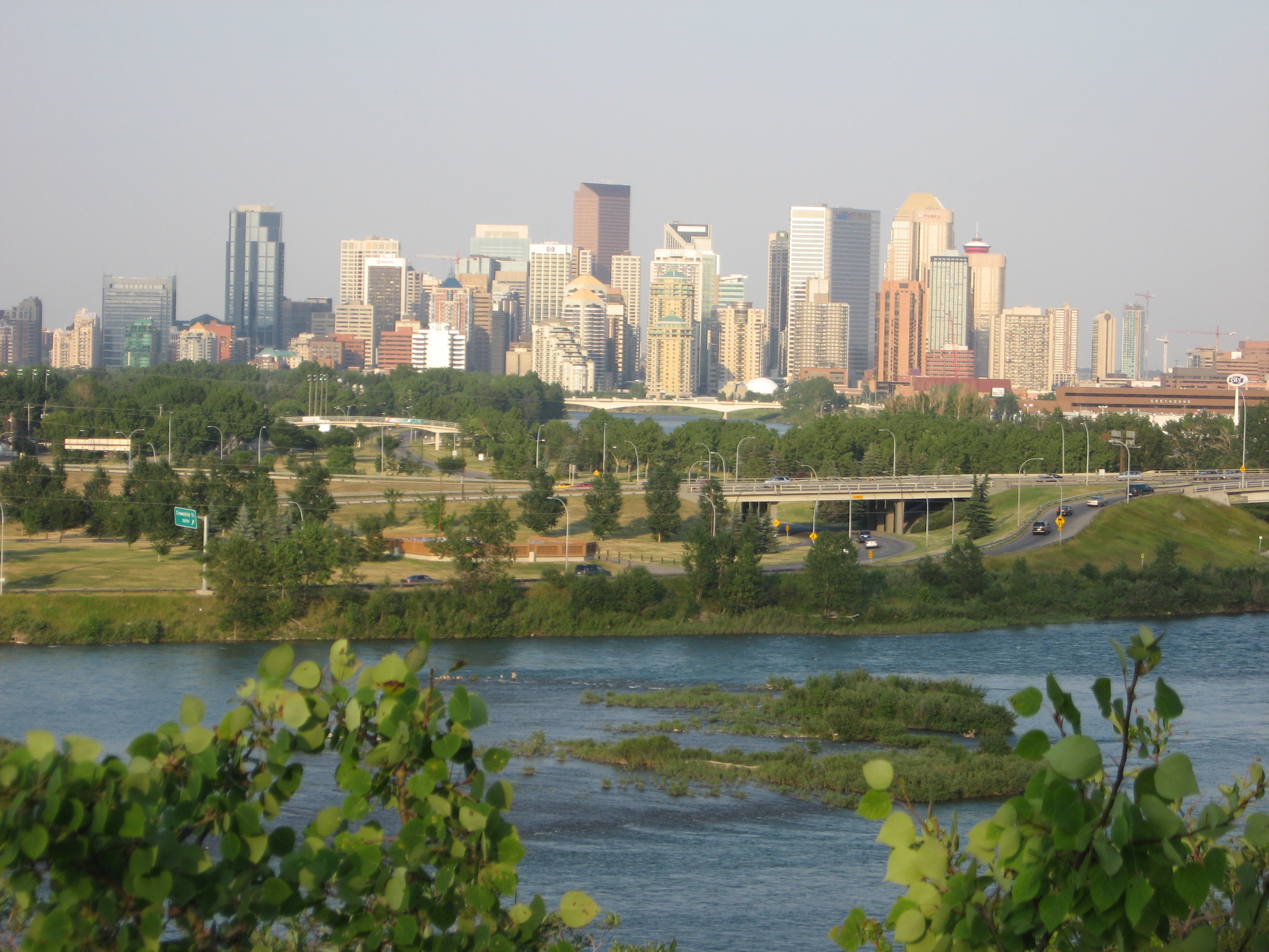 View of Downtown Calgary from the Douglas Fir Trail.