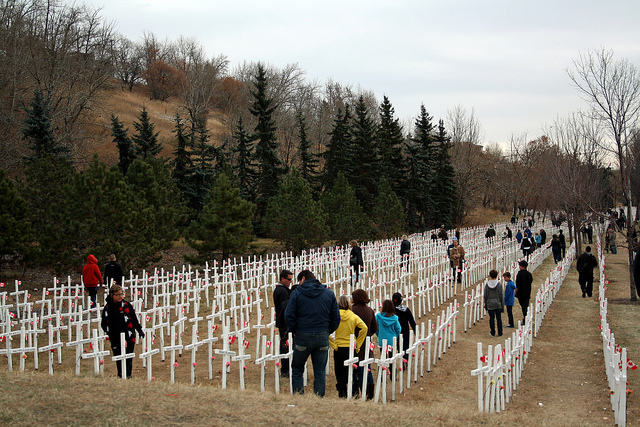 Remembrance Day crosses on the Memorial Drive lawn.