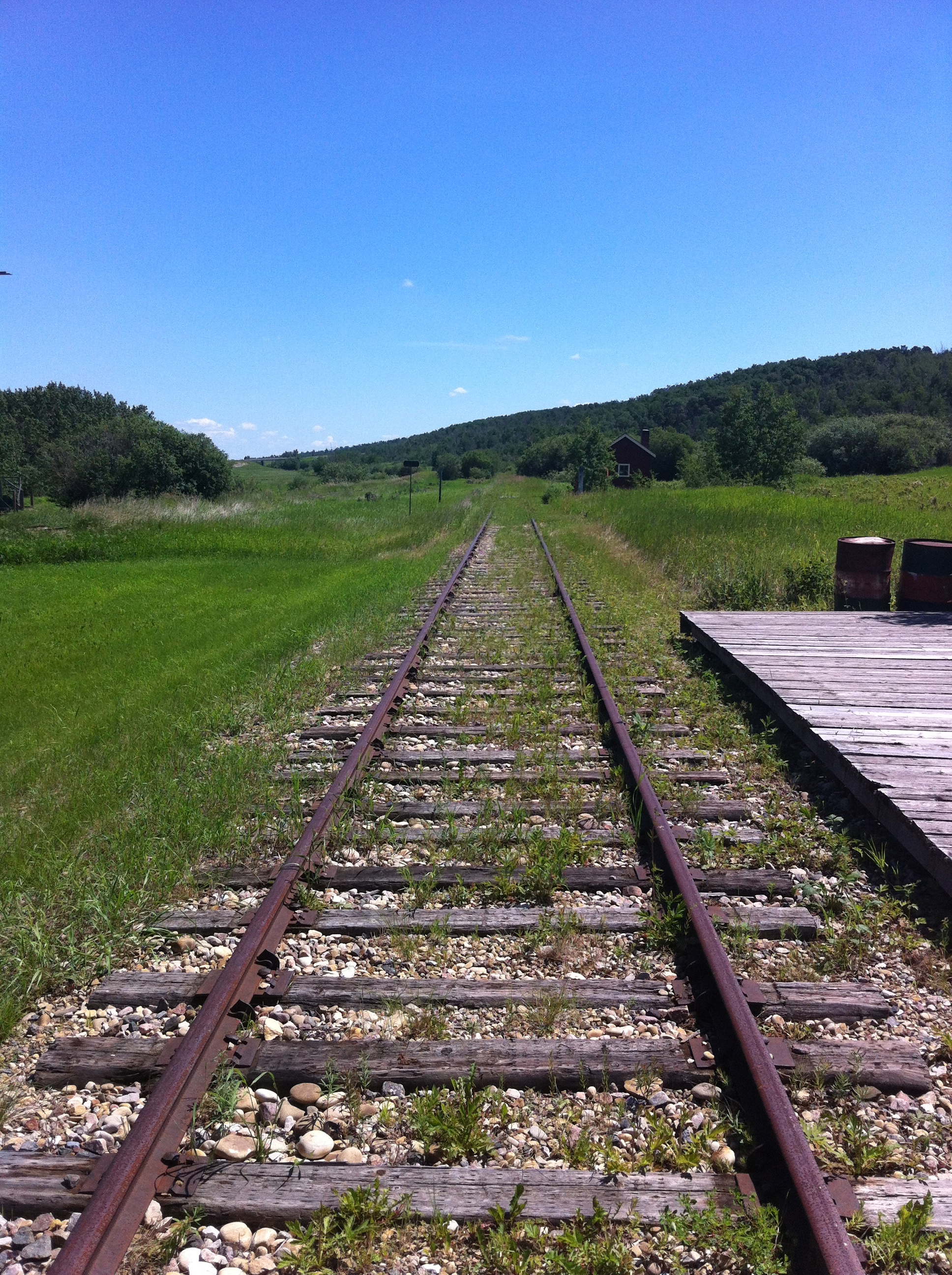 The train track disappears into the grassland in both directions.