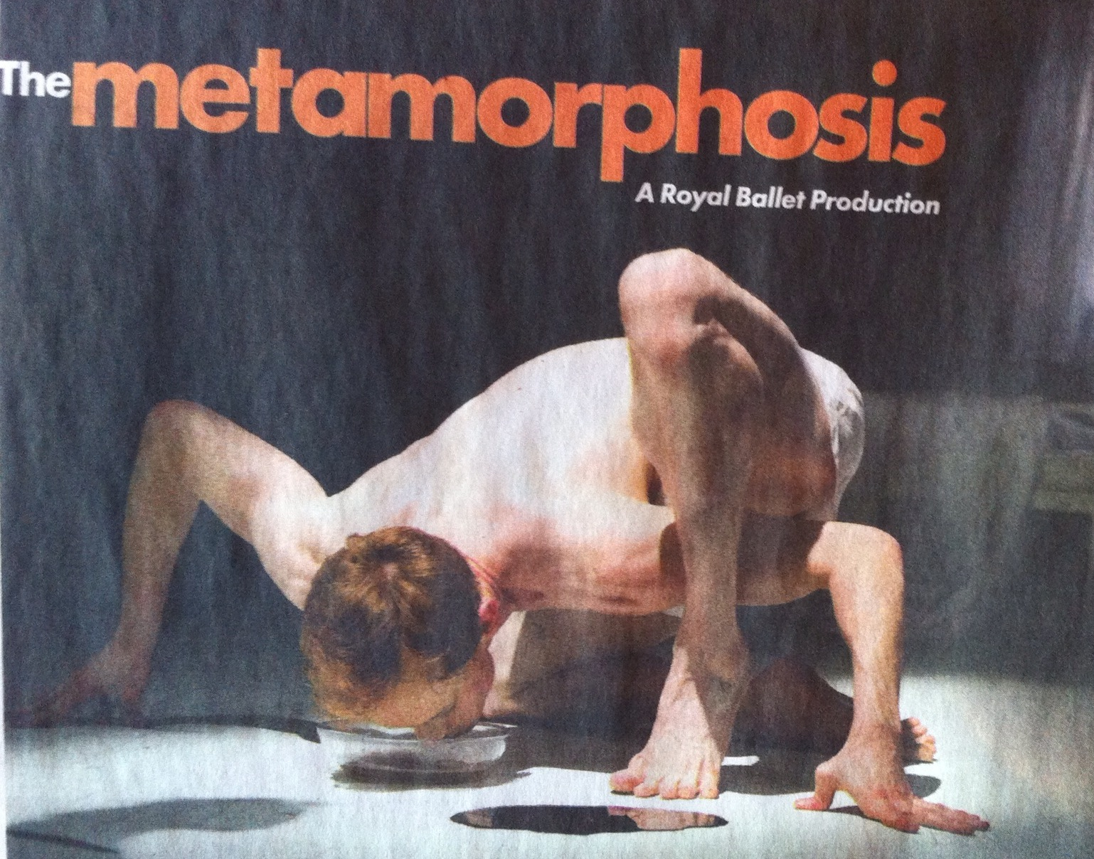 Image for The Metamorphosis ballet by the Royal Ballet reminded my of one of my yoga classes. Seriously this capture my imagination immediately as I flaneured the paper.