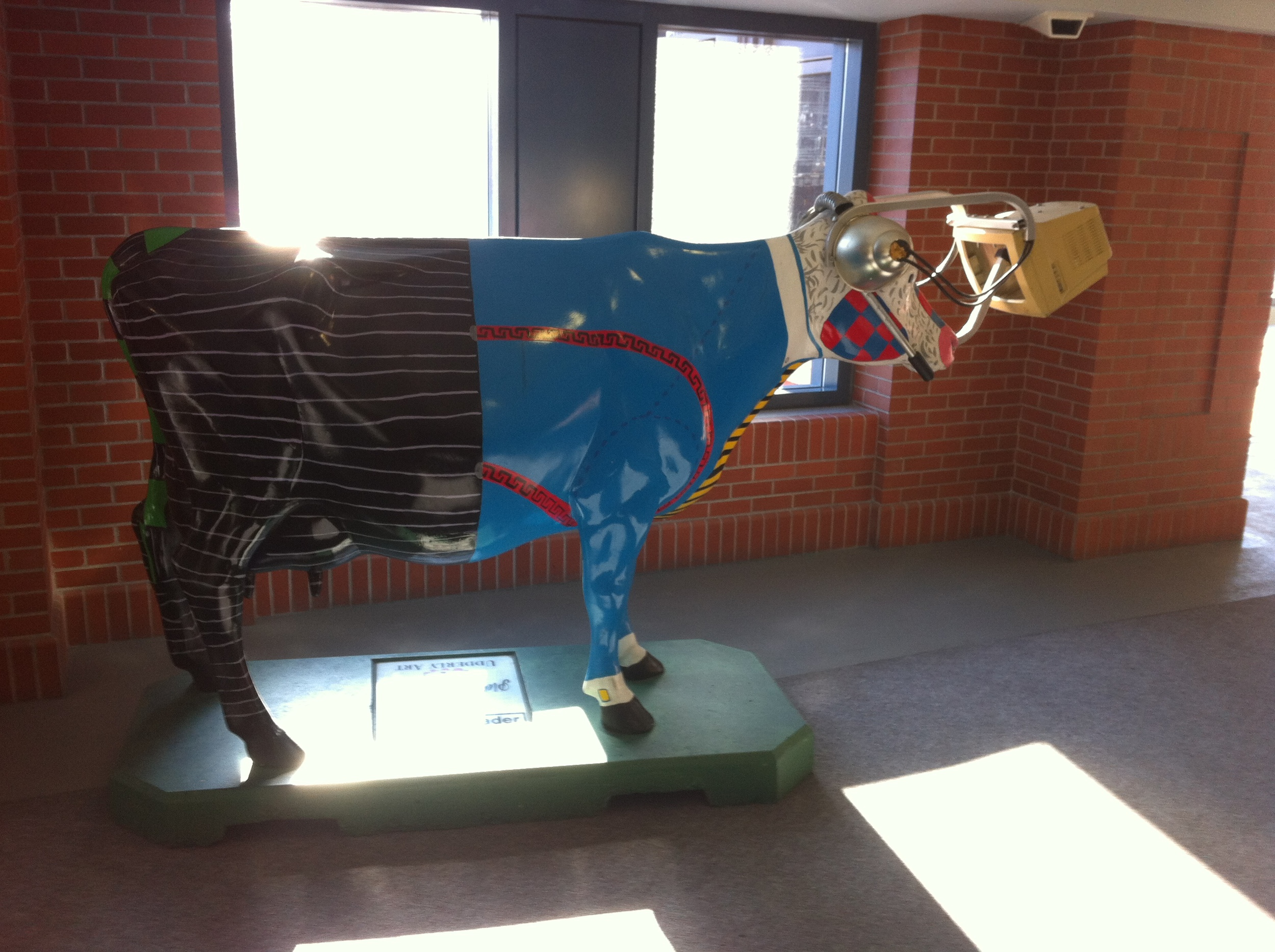 Moony Trader is one of the first cows you encounter. Damien Manchuk from ACAD was the artist, the piece was commissioned by Hugh McGillvary of CIBC Wood Gundy who had an idea to dress up a cow as a stock-trading pit trader. Hugh took Damien to men's clothing store to see what well-dress cows were wearing in 2000 and let his imagination go to work. The result was a pin-stripped hind quarters, a bright yellow striped power tie and the now antique looking computer strapped to his nose so he could keep up with the TSE quotes 24 hours a day.
