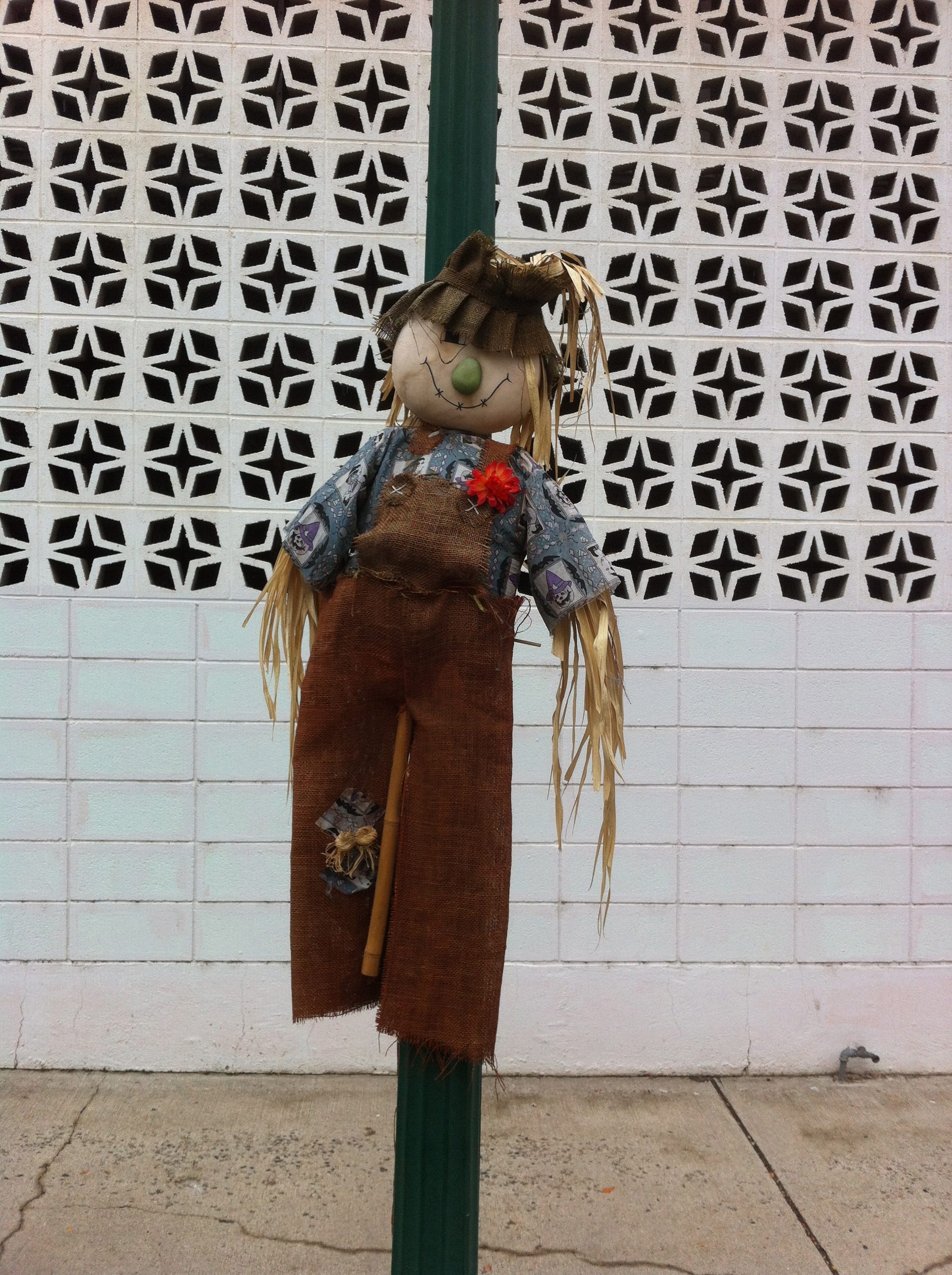 These dolls were fastened to posts throughout the city, at first it was cute then just strange.