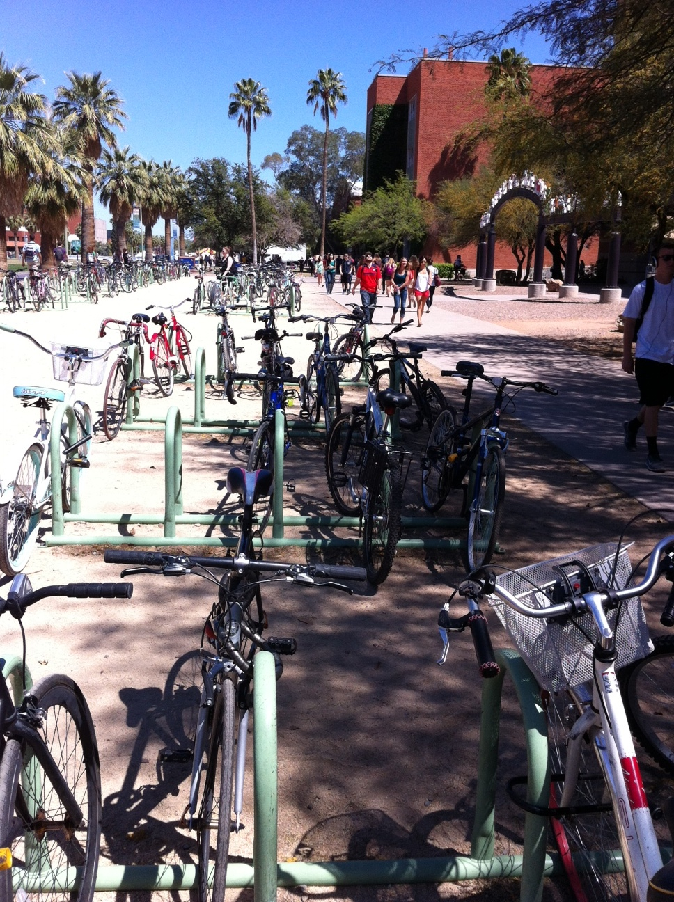 Cycling is a popular mode of transportation on the UofA campus.  The bike racks, like these ones on the central mall are well used.