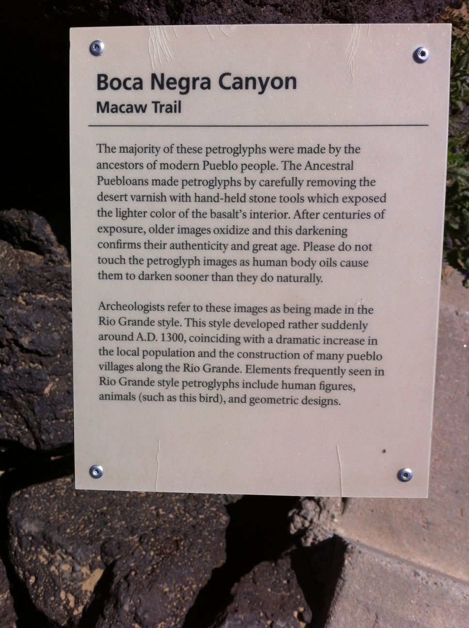Macaw Trail