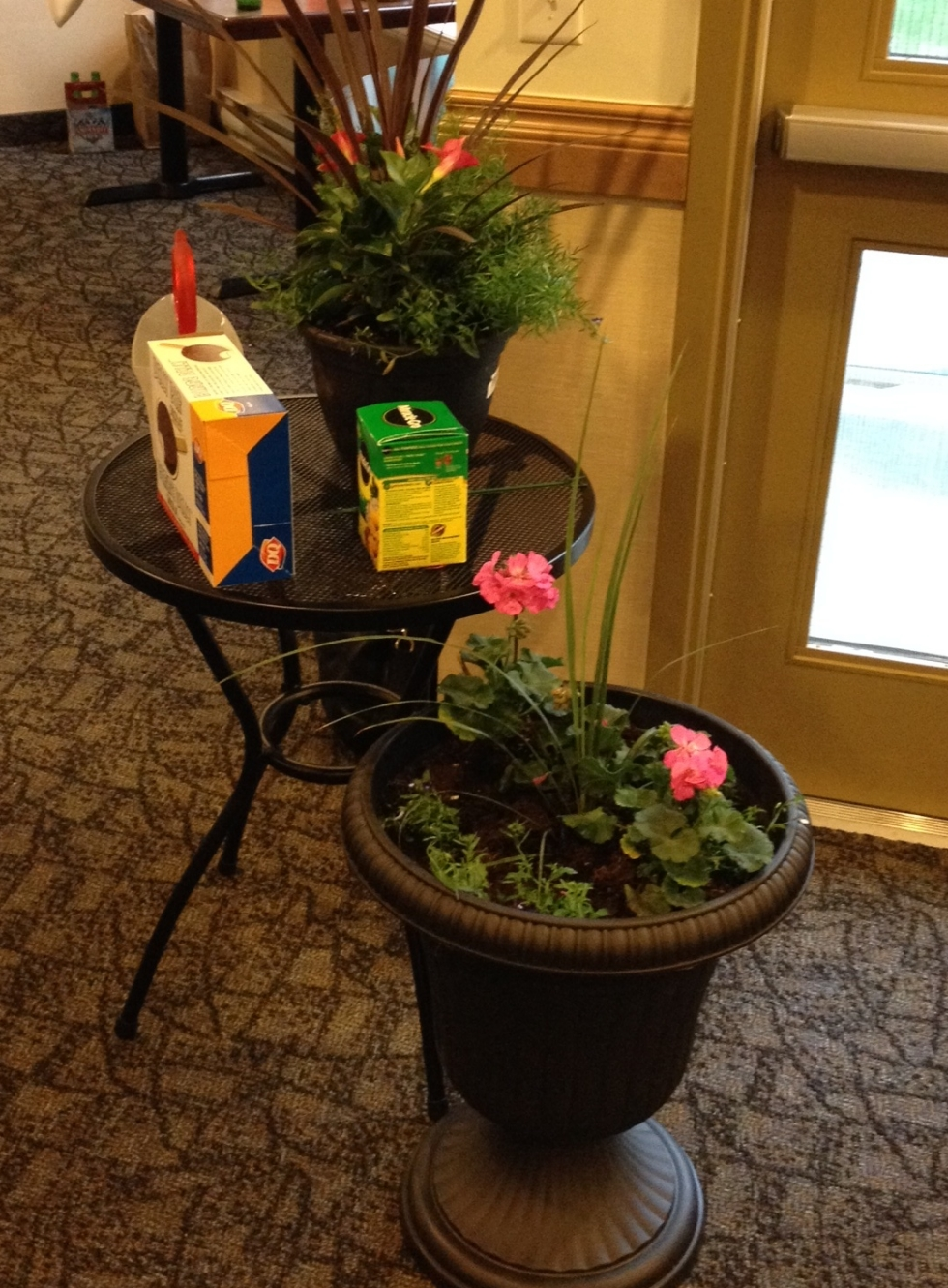 TADA! A patio fun extravaganza! plants...pot(s)...table..dilly bars...fertilizer..watering can.