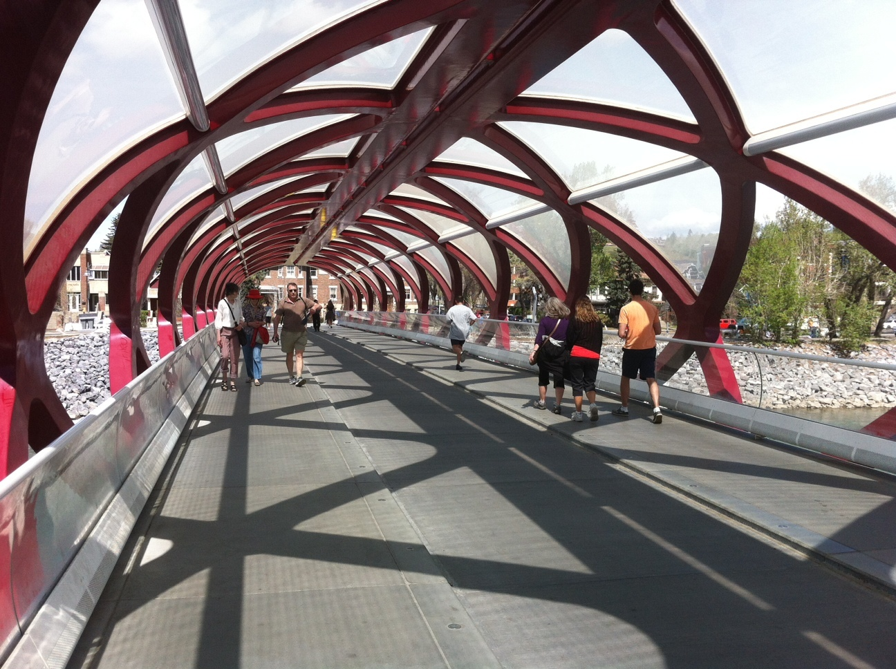 Calgary's Peace Bridge designed by Santiago Calatrava is a popular place for pedestrians, joggers and cyclists to cross the Bow River.