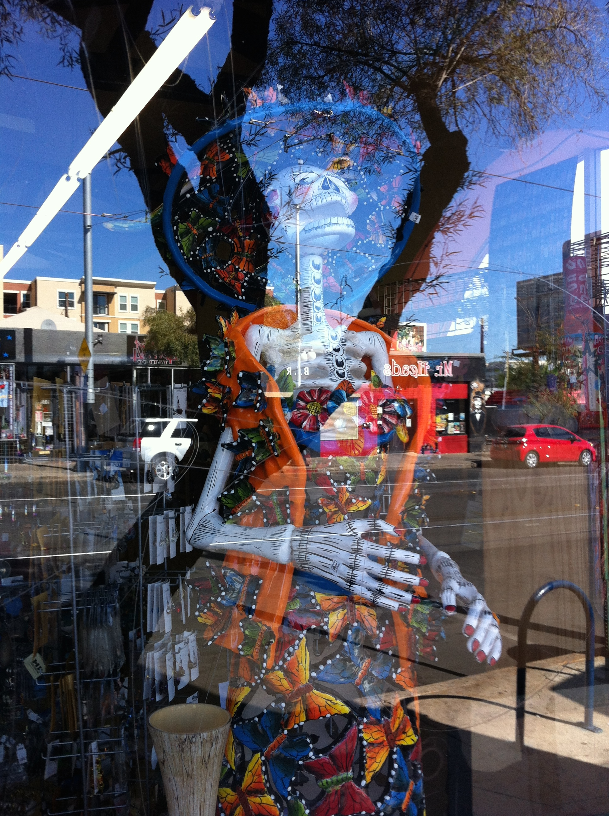 Butterflies & Skeletons? Tucson has a rich high and low brow culture.