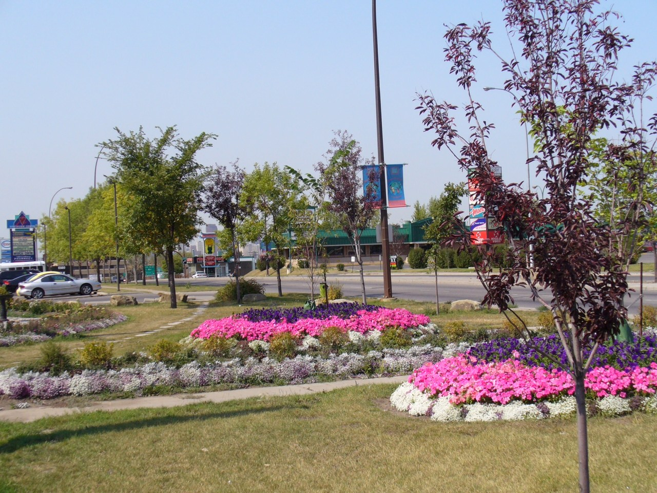 Unity Park is just one of the many improvements the International Avenue BRZ has spear headed since its inception.