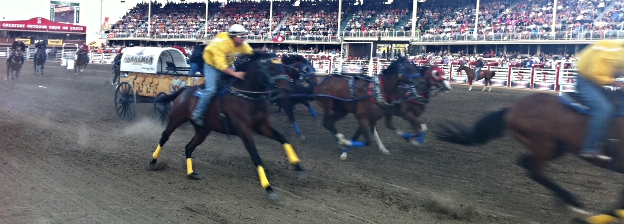 For anyone who loves speed, the chuck wagon races have to be thrilling.  Talk about horse power?