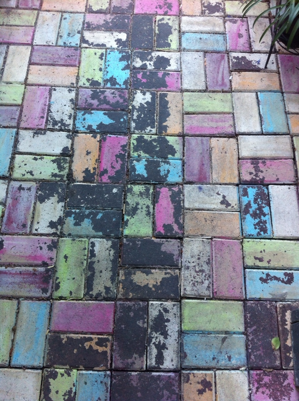 We both loved the colourful patina on these bricks.