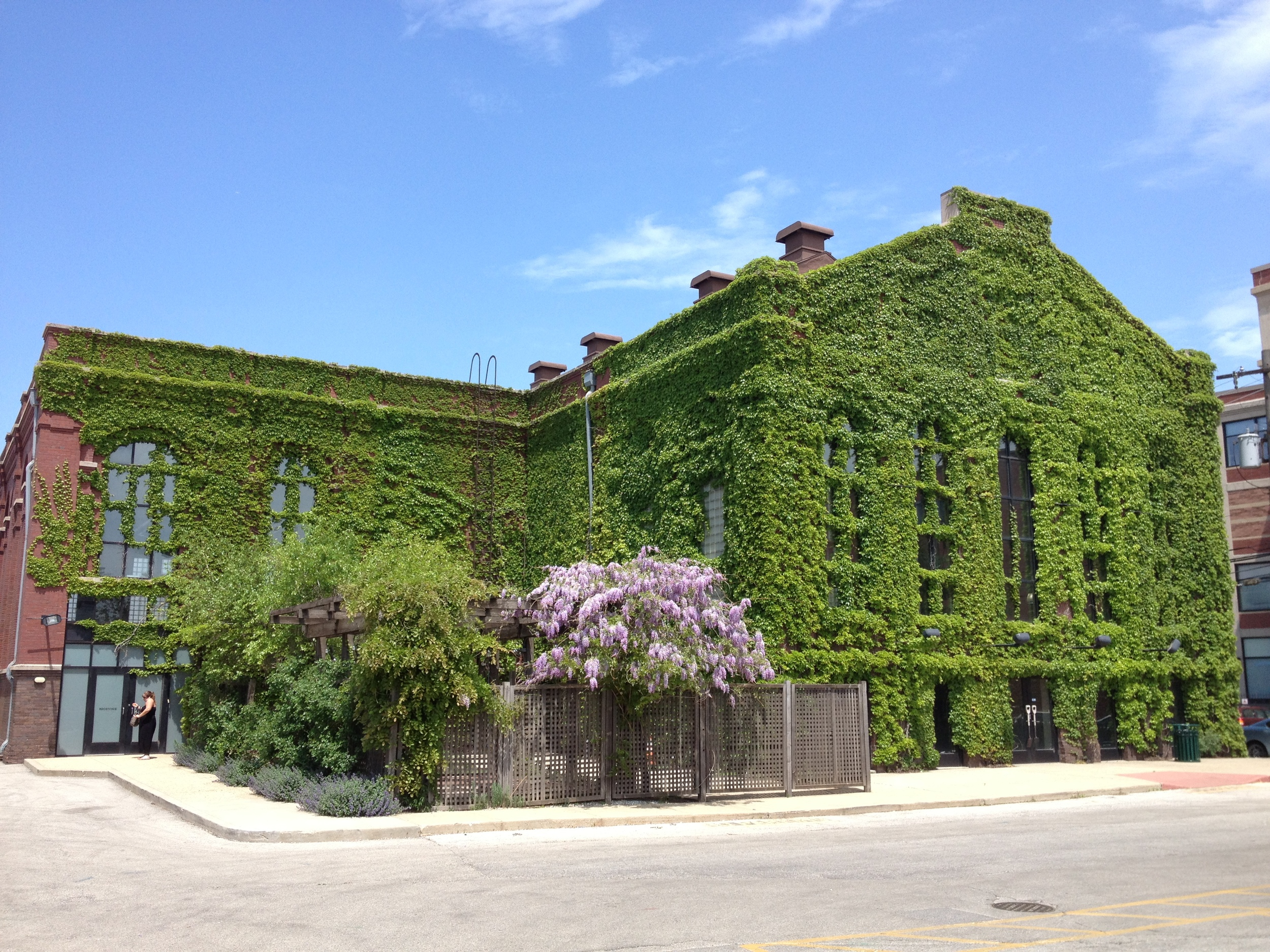 This ivy covered warehouse in Chicago was pleasant flaneur surprise.
