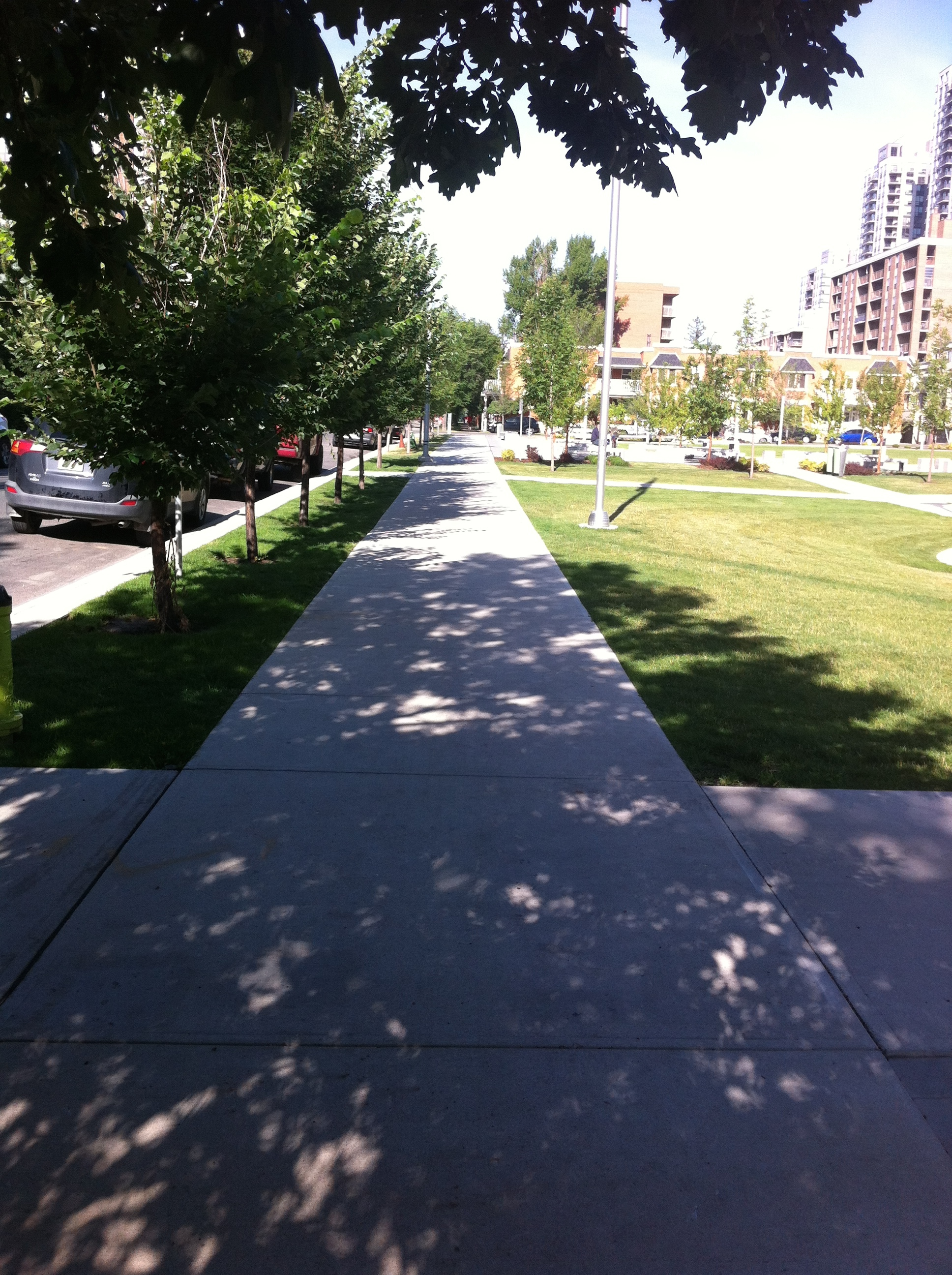 13th Avenue streetscape at Barb Scott Park.