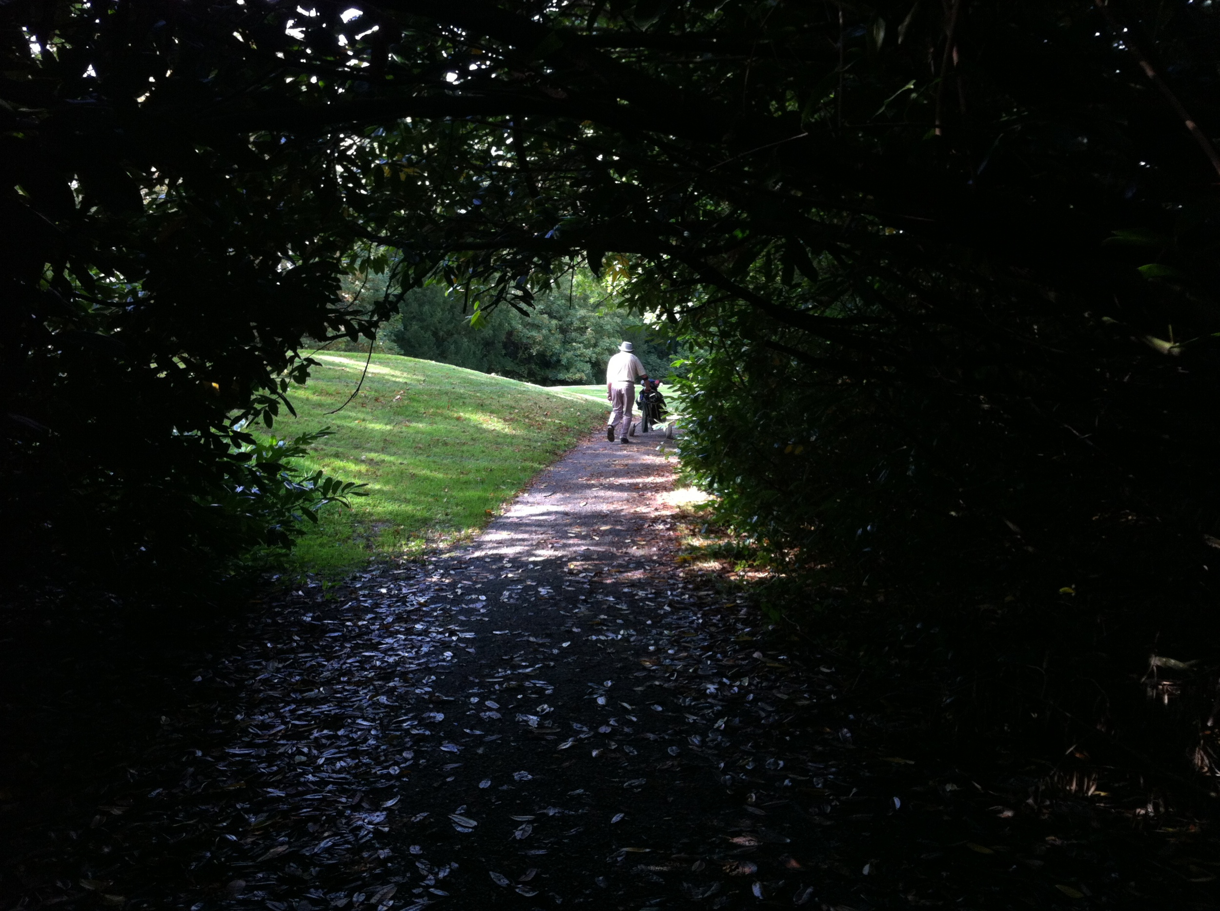Memories of Adare: An existential walk in the park!