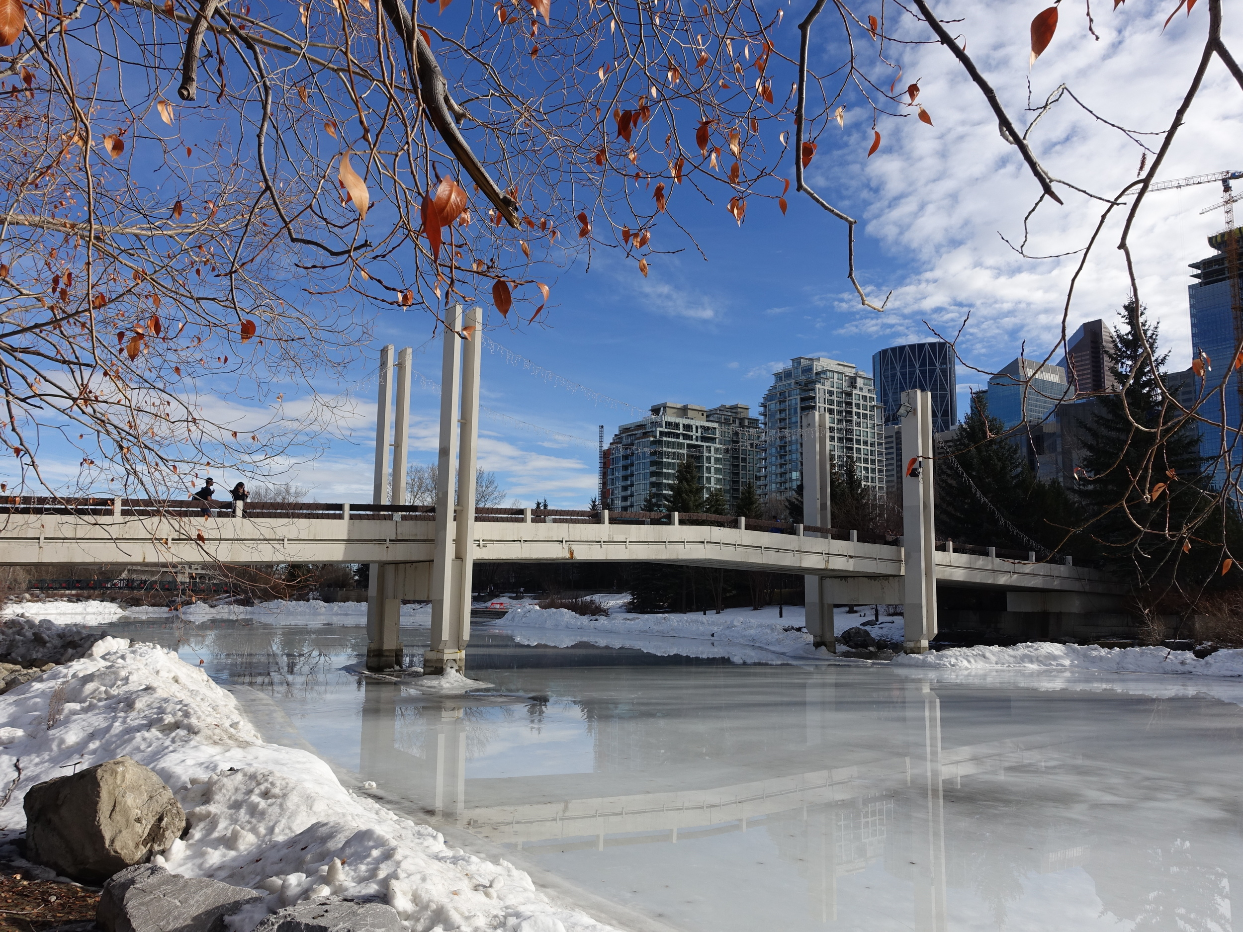 Jaipur Bridge recognizes the friendship and goodwill between Calgary and Jaipur, India. In the winter the Bow River lagoon becomes a skating rink. It is the entrance to Prince's Island Park on of North American's best urban parks.