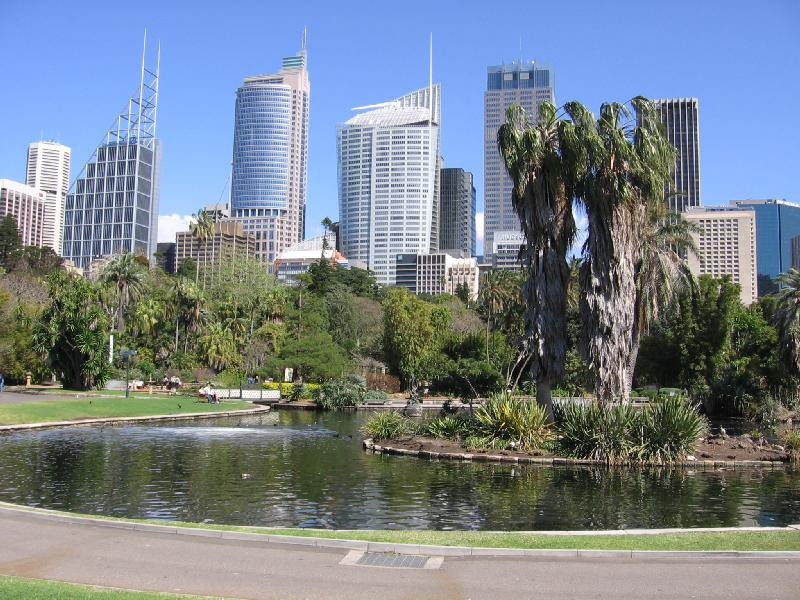 Sydney's botanical gardens is an urban oasis next to the City Centre.