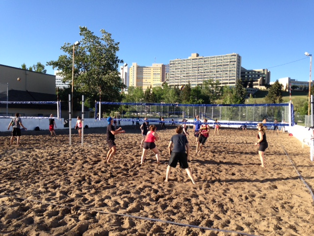 Winter outdoor hockey rink becomes a summer outdoor beach volleyball facility in Parkdale.
