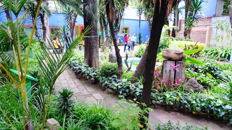 Kahlo's garden oasis.