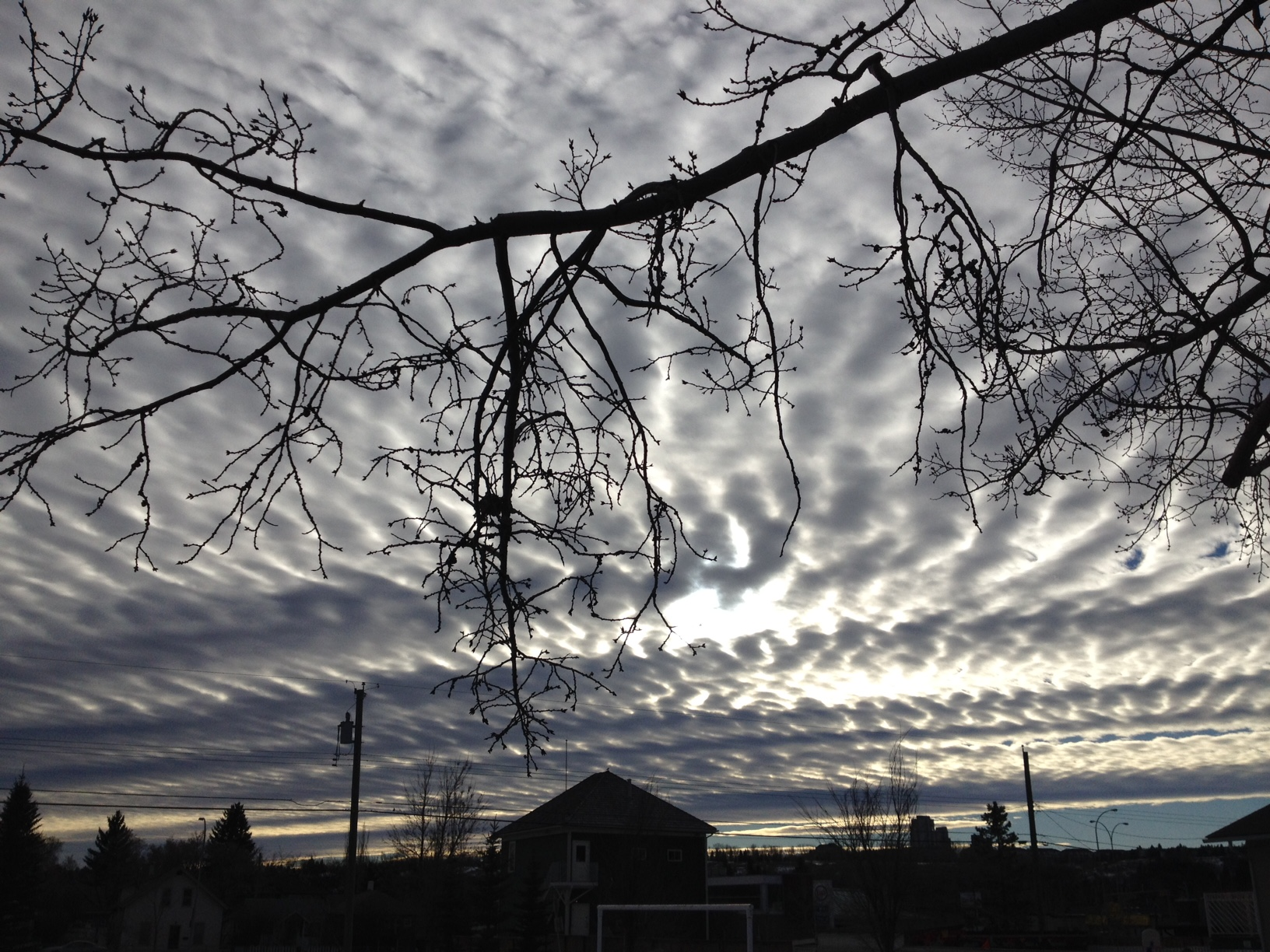 Ripple Clouds, Grand Trunk Park, my front yard, Calgary