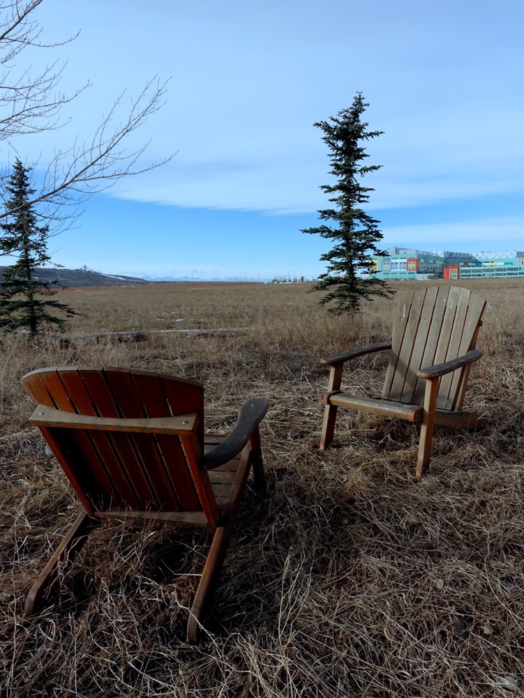 Found these in the field that will soon be Calgary's newest inner-city community - University District.  Looks like someone has already moved in.