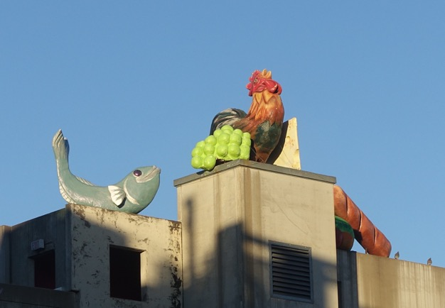 "I have not clue what these are doing on the roof of parkade. This you could call ""weird."""